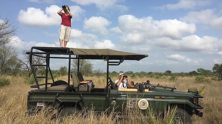 Joyce and Petter spotting for elephants in Gorongosa National Park, Mozambique. (©ElephantVoices)
