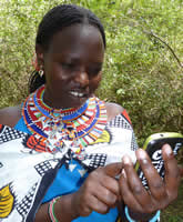 Agness Kilena, guide at Basecamp Maasai Mara, checking out the Mara EleApp. (©ElephantVoices)